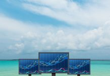 Taking a view of the full picture when considering offshore investment strategies