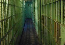 Family violence: Ngqamakhwe man sentenced for murder of his girlfriend