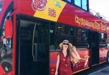 City Sightseeing Tour: The Top 5 Attractions in Cape Town