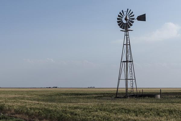 FF Plus condemns latest farm murder in Limpopo