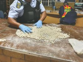 Dealer bust with R200k worth of mandrax, Newcastle. Photo: SAPS