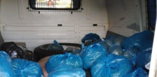 Woman arrested with 65kg of dagga, Maclear. Photo: SAPS