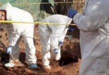 Missing woman's body discovered in shallow grave. Photo: SAPS