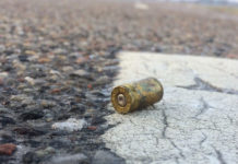 Drive-by shooting, man dies in hail of bullets, Windvogel, PE