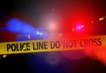 Retired businesswoman (71) brutally murdered in her home, Upington