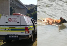 Search and Rescue Unit search for Doringkop murder victim, Tugela river. Photo: SAPS
