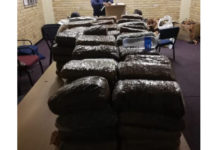 Dealer arrested with R350k worth of dagga, Kensington, CT. Photo: SAPS