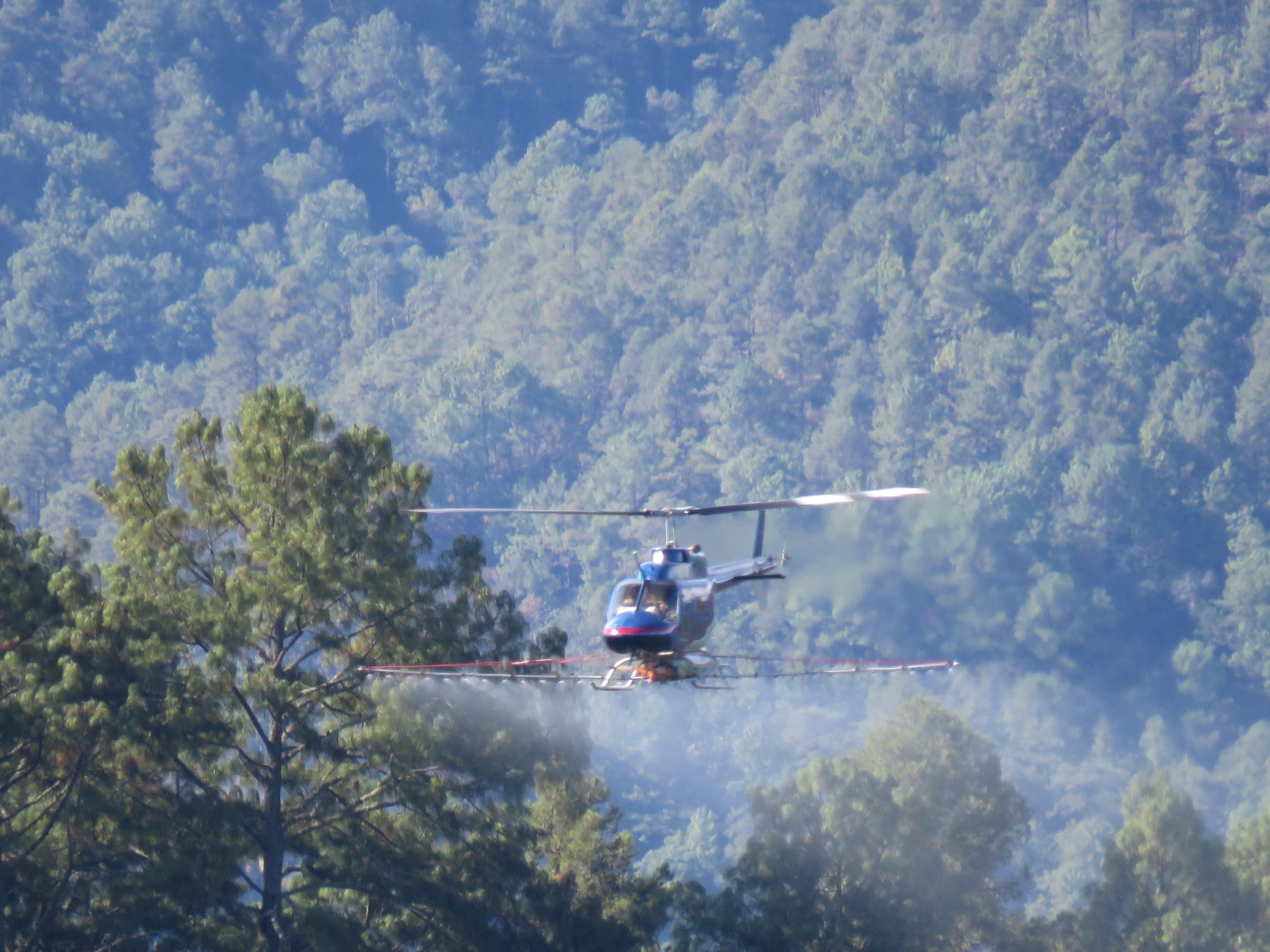 Combate de plagas en bosques