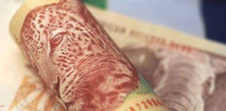 Gauteng Department of Health tender fraud of R1 billion