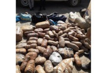 R250k worth of dagga recovered, Potchefstroom. Photo: SAPS