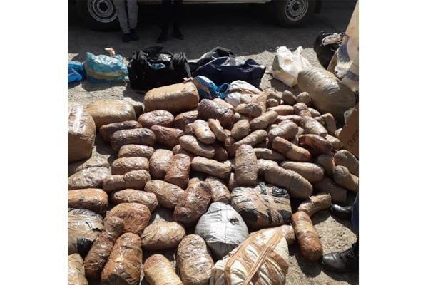 R250k worth of dagga recovered, Potchefstroom. Photo: SAPS