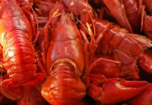 6445 Crayfish tails recovered, 3 arrested, NC