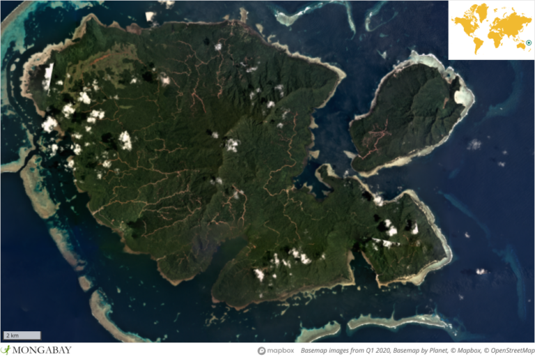 Tree cover loss data from the University of Maryland indicate most of the logging roads on Vanikoro were cleared in 2017. Since then, satellite imagery shows logging efforts expanded in the southern part of the island near Peau in 2019 and at several sites in Vanikoro's northern half in 2020.