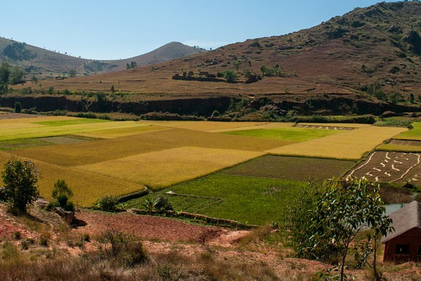 Eskom and 139 farms: Matjhabeng should have sold the land long ago already
