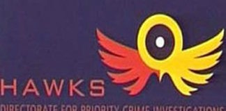 2 Hawks officers arrested for theft, money laundering and other charges