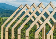 WWF Begins Work on WeWilder, the First Rural Co-working Campus in Romania