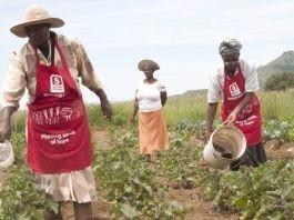 Velemseni Farming Group