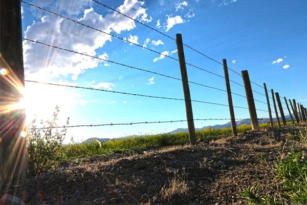 Farm attack, farmer and wife tied up, traumatized for 4 hours, Fynbocsh estate, Malmesbury
