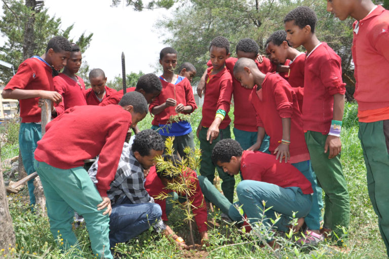 Students of Bole Gerji Primary and Secondary school in Addis Ababa planting trees that they received from the botanical garden as part of its 'Model Gardening' Project. Image courtesy Gullele Botanical Garden.