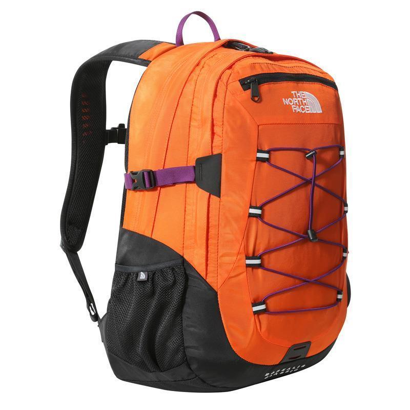 cf9c-Vanessa-orange.progressive.jpg